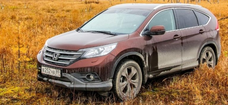 Red Honda CRV on golden grasses